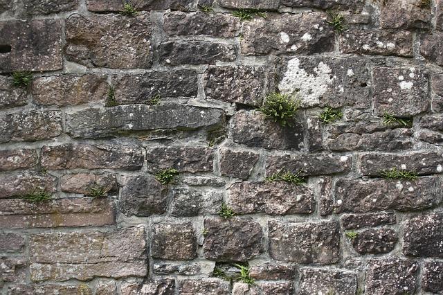 Suchý múrik v záhrade: s našimi radami ho vybudujete veľmi jednoducho